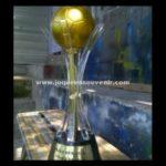 Piala Bergilir